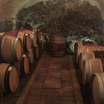 Sao del Costers cellar wine tour