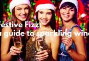 Festive fizz: guide to sparkling wines (Champagne, Prosecco, Cava)